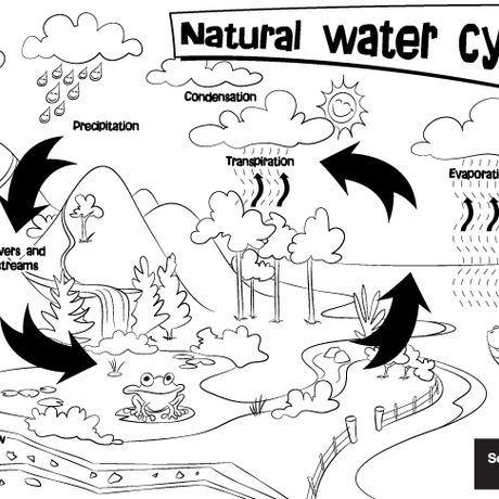 Natural water cycle colouring sheet | South East Water Education