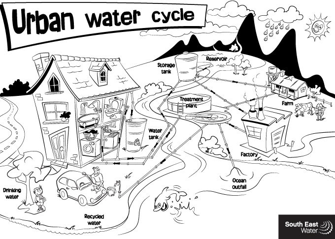 Urban Water Cycle Colouring Sheet South East Water Education